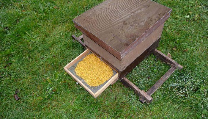 Wissen zu Bienen Honig sowie Bienenprodukte - Blütenpollen