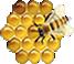 Imkerei-Bienenlogo